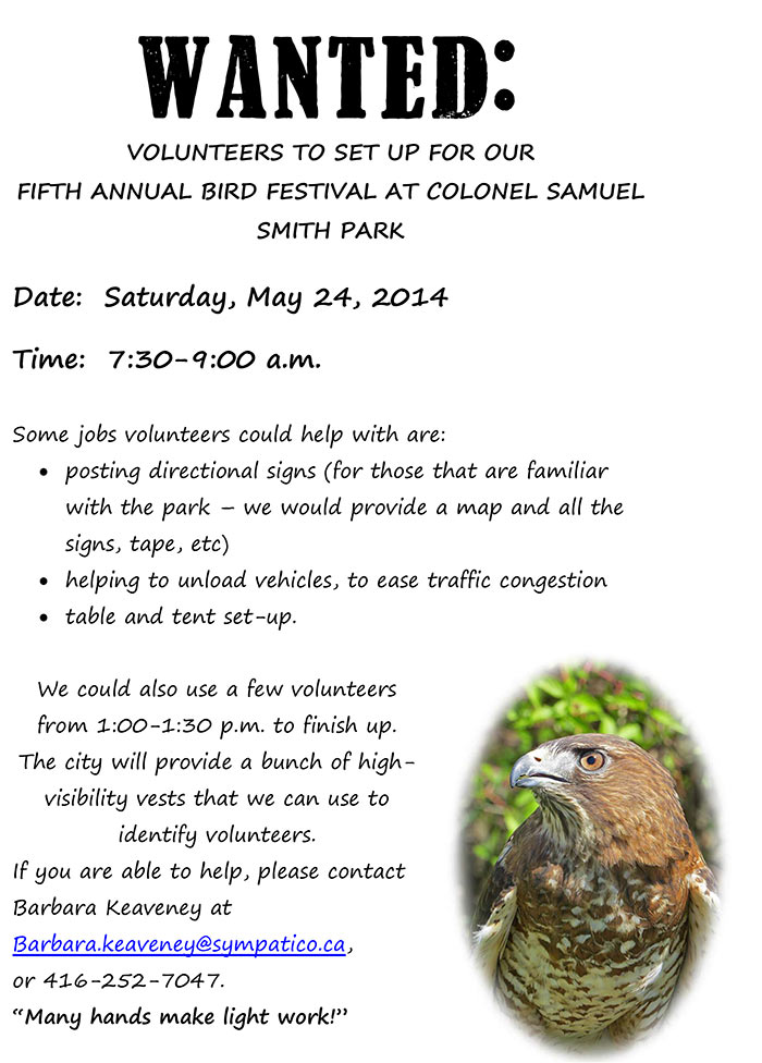 WANTED-bird_festival_volunteers